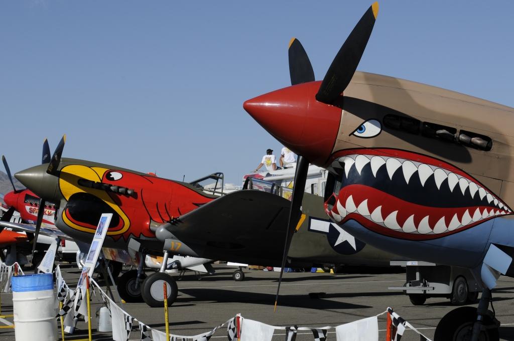 P-40E Race #18 Sneak Attack & P-40N Race #17 Parrothead